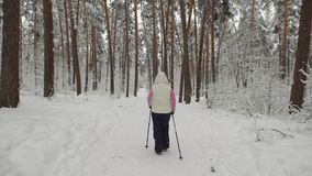 Back view of energetic woman doing active nordic walking exercising in the forest. Aged lady stepping quickly with ski stock footage
