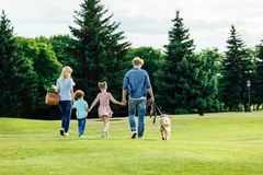 back view of family with two kids holding hands and walking with golden retriever dog stock photography