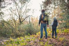 Back view of father and son holding hands while hiking together. In autumn forest Royalty Free Stock Photography