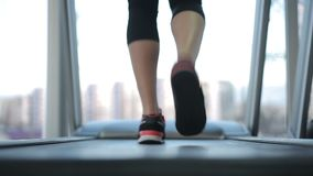 Back view of female legs walking and running on treadmill in gym, woman training. Stock footage stock footage