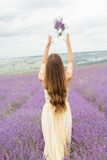 Back view of girl at purple lavender field Stock Images