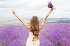 Back view of girl at purple lavender field Stock Image