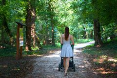 Back view of girl walking the pram in the park walkway, mother in dress from rear view walking with the stroller in nature royalty free stock image