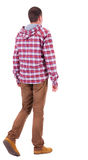 Back view of going  guy in a plaid shirt with hood. Royalty Free Stock Photography