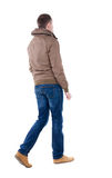 Back view of going  handsome man in brown wind breaker Stock Photos