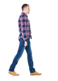 Back view of going  handsome man in checkered shirt. Royalty Free Stock Photography