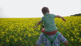 Farmer carrying grandson on shoulders in field. Back view of grandfather carrying little boy on his shoulders walking among flowering plants. Playful stock video footage