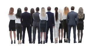 Back view group of business people. Rear view. Isolated over white background. stock image