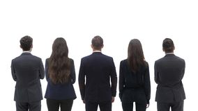 Back view group of business people. Rear view. Isolated over white background. Royalty Free Stock Photography