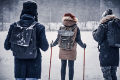 Back view of a group of hiker friends with backpacks walking near a winter forest royalty free stock image
