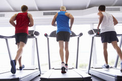 Back View Of Group Of Men Using Running Machines In Gym Stock Image
