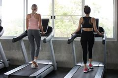 Back view of group of young people running on treadmills in sport gym . two fitness woman runner on running machine in morning. Back view of group of young stock images