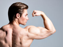 Back view of handsome man with muscular body. Back view of handsome man with sexy muscular beautiful body posing at studio Royalty Free Stock Photo