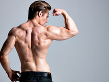 Back view of handsome man with muscular body. Back view of handsome man with muscular beautiful body posing at studio Royalty Free Stock Photo