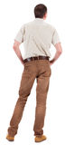 Back view of handsome man in shirt  looking up. Royalty Free Stock Image