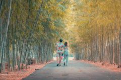 Back view of happiness Male and female couples walking hand in hand and fall in love along the bamboo park stock photos