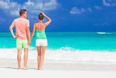 Back view of happy romantic young couple holding hands on the beach Stock Photography
