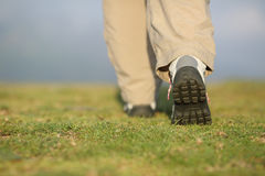 Back view of hiker legs walking on the mountain. Back view of hiker legs with boots walking on the mountain with an unfocused background Royalty Free Stock Image