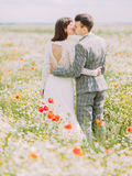 The back view of the kissing newlyweds while walking in the poppy field. royalty free stock image