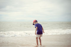 Back view of little boy walking along the beach during the sunset Stock Photography
