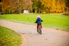 Back view of Little girl riding a bicycle in the park on the road covered with autumn oak and maple trees.Healthy stock image