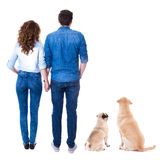 Back view of lovely couple and their cute dogs isolated on white Royalty Free Stock Images