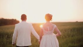 Back view of lovers walking in a field at sunset, happily enjoying their wedding day. Bride in a beautiful white dress. Lovers walking in a field at sunset stock footage
