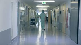 Back view of a male doctor walking along the hospital corridor