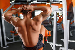 Back view of man doing abdominal crunches. Strong back. Back view of man doing abdominal crunches in sport gym Royalty Free Stock Photo