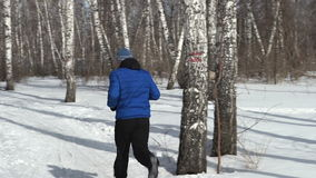 Back view of man is running through the forest stock video footage