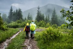 Back view of man and teenager walking on forest trail. Back view of two hikers man and teenager in raincoats with backpacks walking on forest trail in the fog Stock Photography