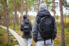 Back view of man and woman with backpacks hiking in forest Stock Photos