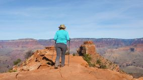 Caucasian woman hiker hiking in Grand Canyon. Back view in motion, adult active woman tourist with trekking poles hiking in Grand Canyon, walking along the trail stock video