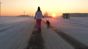 Woman Walking With A Dog In The Snowy Winter On The Road At Sunset. Back view, in movement, woman walking with her dog on the road, against the background of a stock video