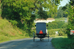 Back view of moving Amish horse and buggy royalty free stock images