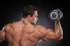 Back view muscular man lifting dumbbell up. Royalty Free Stock Photo