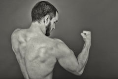Back view of muscular young man showing his muscles Stock Images