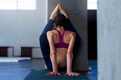 Back view of muscular young woman doing advanced stretching exercise with wall performing variation of upward facing royalty free stock images