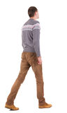 Back View Of Going Handsome Man In Sweater Royalty Free Stock Photo