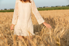 Amazing young lady in the field. Back view picture of amazing young lady in the field stock images