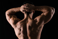 Back view portrait of a muscular man Royalty Free Stock Photography