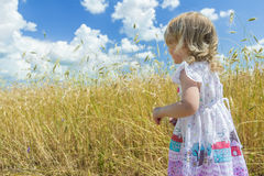 Back view portrait of two years old blonde girl looking at country farm field Royalty Free Stock Photo