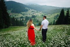 Back view of the pretty caucasian couple holding hands while walking along chamomile meadow to the mountains covered Royalty Free Stock Photos