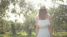 Back view of pretty young woman in straw hat and long white dress walking through the green summer garden. Carefree. Attractive young woman in a straw hat and stock video