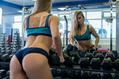 Back view of sexy girl near rack with dumbbells Royalty Free Stock Photography