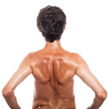 Back view of shirtless man Royalty Free Stock Photo