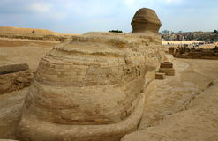Back view of the sphinx next to pyramids, Egypt Royalty Free Stock Image