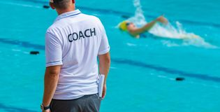 Back view of sport coaches royalty free stock images