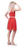 Back view of standing young beautiful  blonde woman. Stock Photos