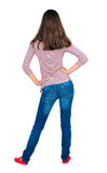 Back view of standing young brunette woman. Royalty Free Stock Images